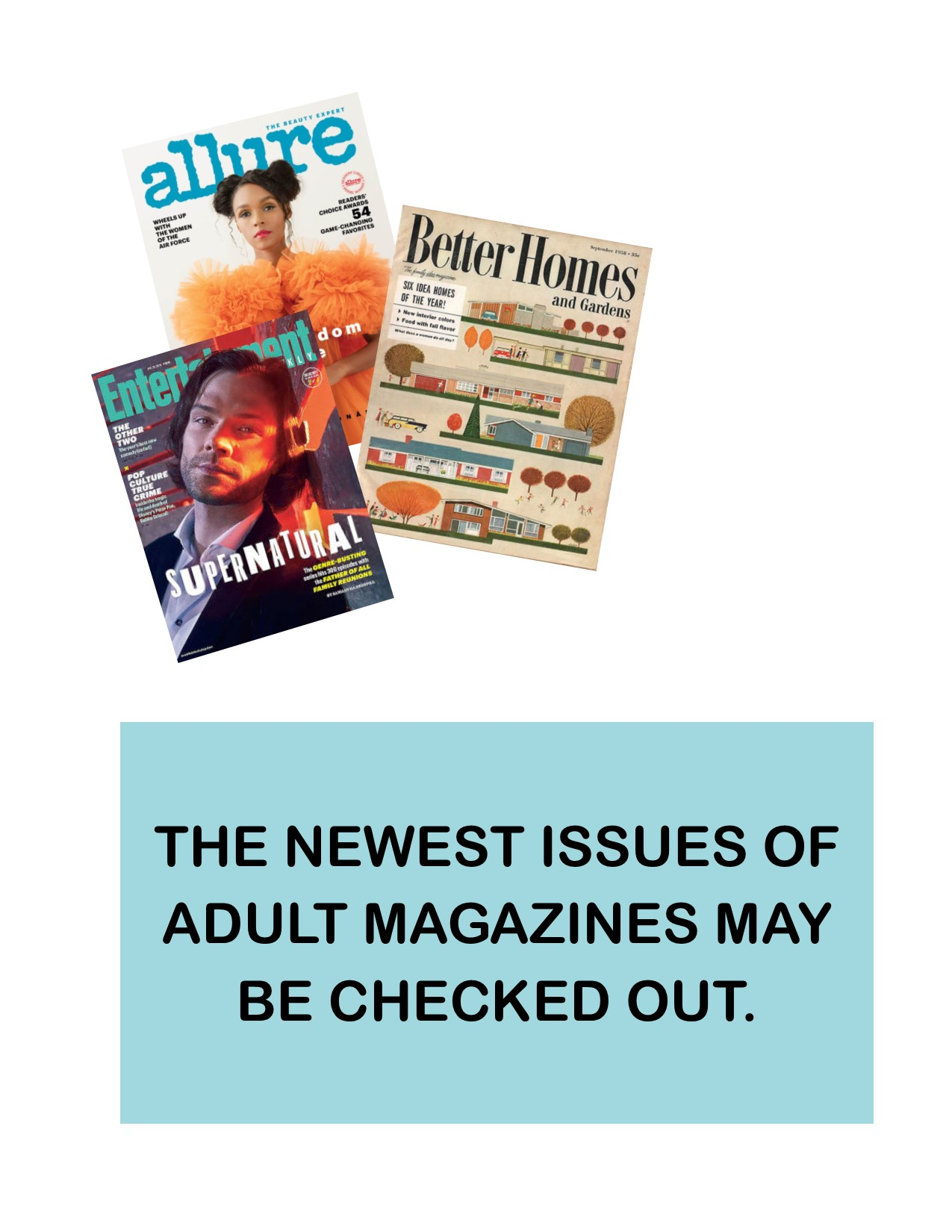 adult magazines
